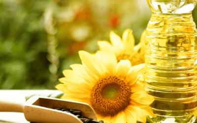 Sunflower Oils – Who is the first among the equals?